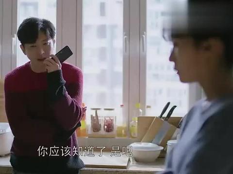 姚晨:高露要跟大哥离婚,小伙对倪大红说的话,太逗了