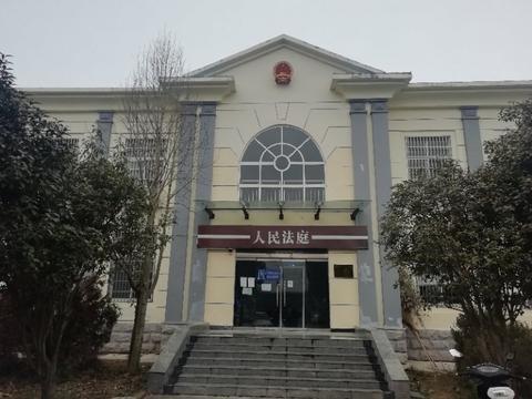 河南信阳多个村集体组织与金光集团合作未获收益被指遭遇骗局