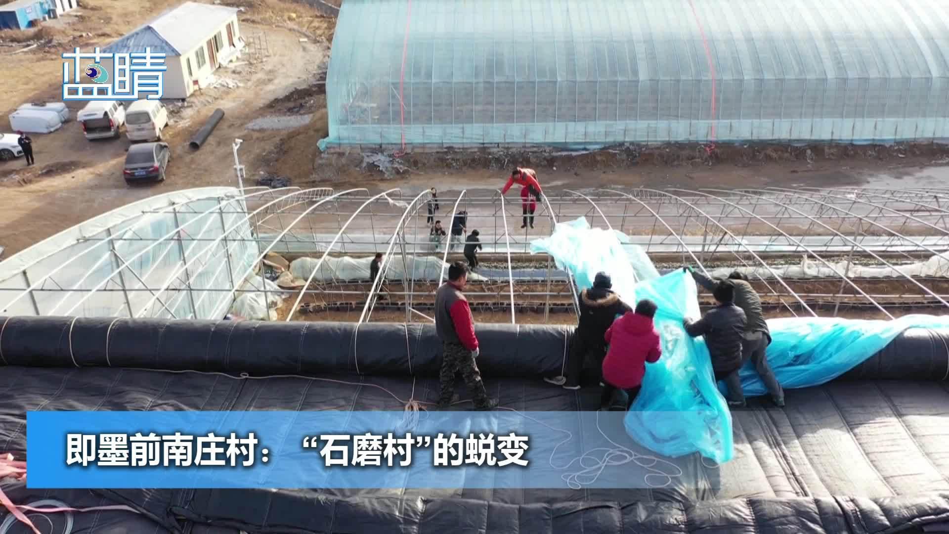 """乡村振兴丨即墨前南庄村: """"石磨村""""的蜕变"""