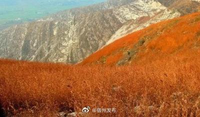 宿州1镇6村入围安徽省千年古镇、千年古村落候选名单