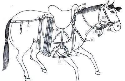 内蒙古博物院《大辽契丹》马具艺术欣赏上篇:孟和套格套分享