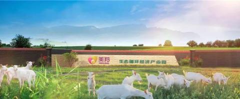 红星美羚乳业打造全产业链体系,铸就高品质好羊奶