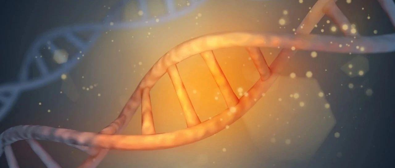 下一代罕见病基因疗法,砥砺前行