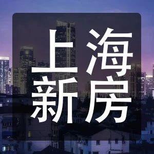 |上海新房指南精选