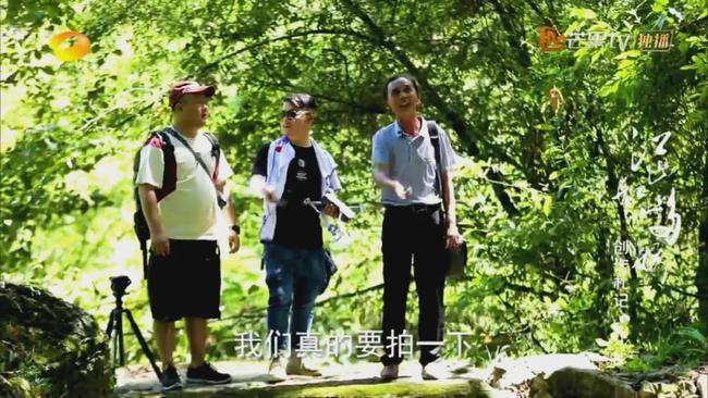 走近《江山如此多娇》原型人物陈吉明 做高坪村乡村旅游带头人
