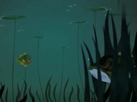动物兄弟:大鲈鱼喜欢在杂草丛生的地方,那里有很多的小鱼