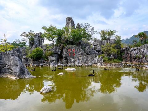 杭州千岛湖不仅有秀水,还有一片奇特的石林