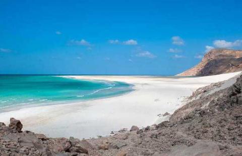 宝藏岛:与陆地隔绝千万年,岛上面花鸟鱼虫价值连城!