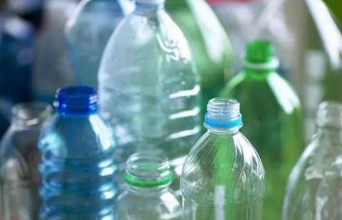 空塑料桶不要扔,冬天拿它养绿萝、杜鹃!