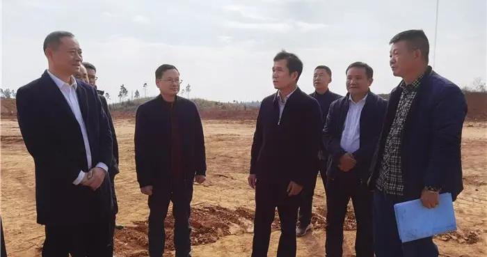 吴恢才调研高标准农田建设和现代农业生猪一体化项目建设