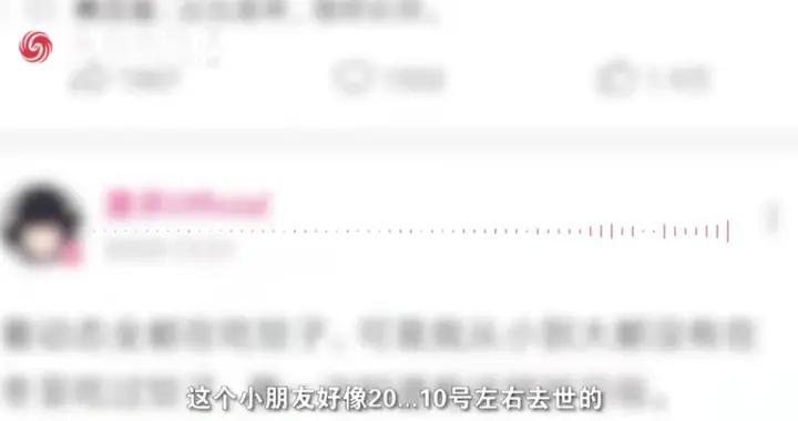 """会理县回应UP主""""墨茶""""去世:遗体已火化"""