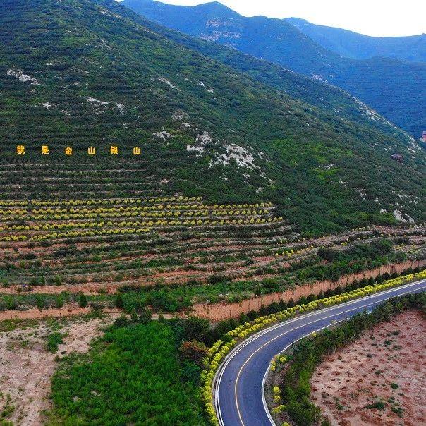 年度造林19.9万亩 阳曲县打造全域绿化新格局