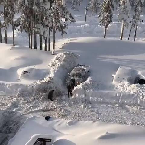 加拿大雪后铲雪取车。 (fb:avantgardens.org)