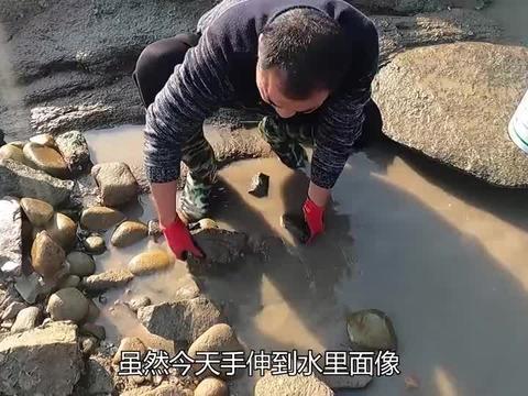 老渔民配方弄40斤秘制鱼仔放重叠坑,抽干后全坑沸腾,爆赚800多