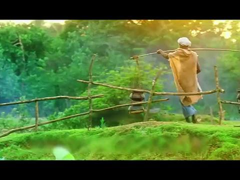 印度电影太敢拍了,直击社会最底层女性!扒出无数人悲惨的一生