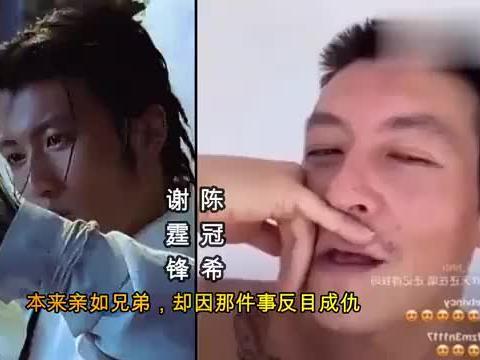 娱乐圈10对反目成仇的明星,谢霆锋 甄子丹 陈冠希,你都知道吗?