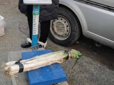 农村大集大葱8元一斤,1根就7元,鸡蛋价格坐火箭也8元了!