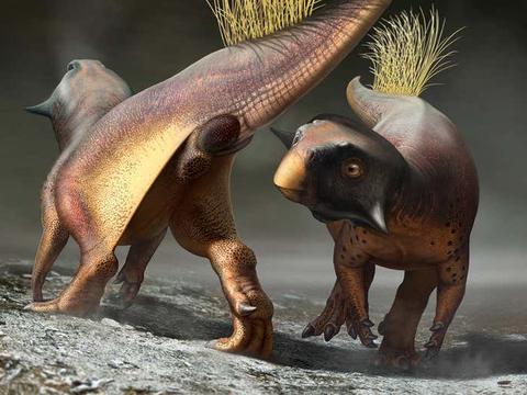 令人惊叹的恐龙化石,可能会告诉我们,这种史前动物是如何交配的