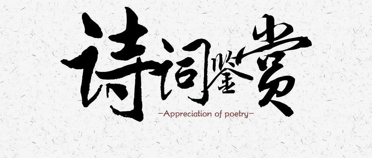 苏轼失眠后写下一首诗,可与李白《静夜思》媲美,令人拍案叫绝!