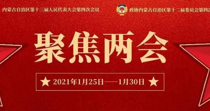 内蒙古自治区十三届人大四次会议筹备工作组召开代表团、随团工作人员和大会工作机构负责人会议