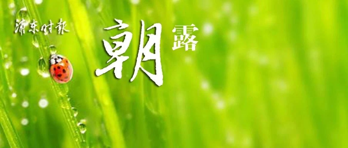 今年首次沪牌拍卖结果公布,中标率5.7%!上海地铁最新首末班车时刻表公布!