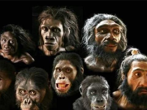 300万年前,第1个人类怎么诞生的?他的父母是两性繁殖而来的吗?
