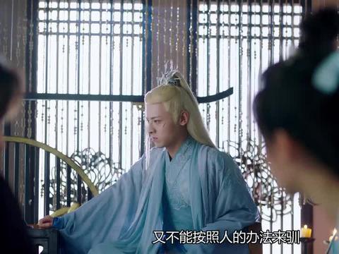 琉璃:司凤教璇玑灵兽圈养手册,蛇君这下倒霉了,苦日子来了