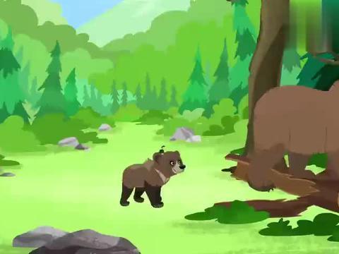 动物兄弟:克里斯变身大灰熊,肚子饿得咕咕叫,大家一起去找吃的