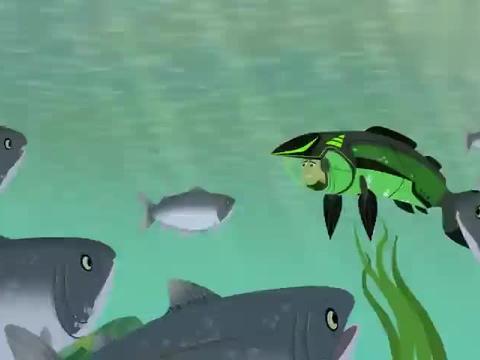 动物兄弟:克里斯不熟悉地形,没有找到正确线路,他很担心鲑鱼们