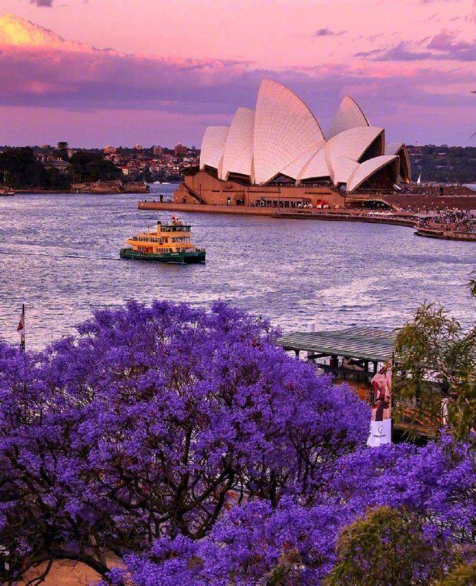 夜幕下的悉尼歌剧院