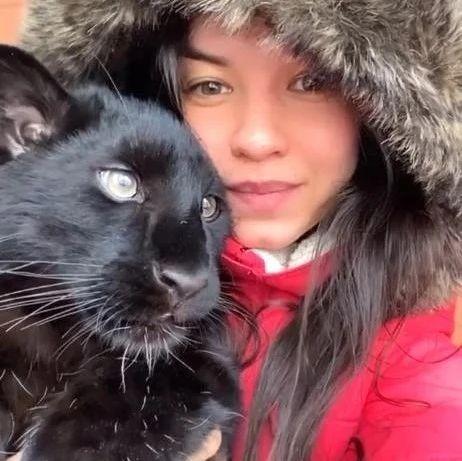 俄罗斯妹子养了只黑豹当宠物,还让狗子教黑豹打猎?!又猛又萌啊!