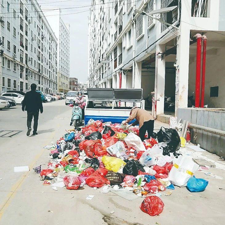 梧州新塘冲廉租房小区垃圾清运不及时,严重影响居民生活
