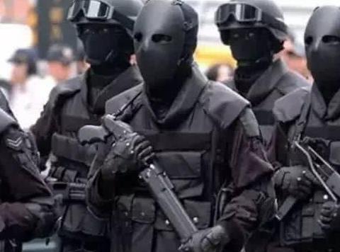 只有20人的特种部队,武力值堪比海豹三角洲,主要打击抢劫犯