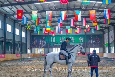 新的一年想马到成功,去福州旅游时,不妨去马术俱乐部骑骑马