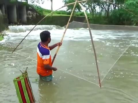发洪水了,村民们在水坝下下渔网捕鱼,一沉一拉轻松捕到不少好货
