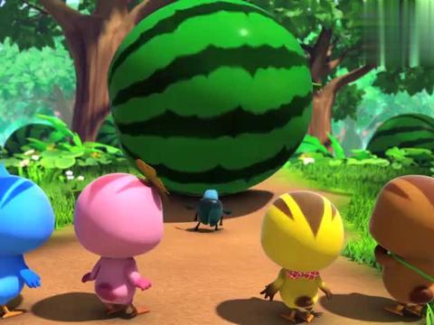萌鸡小学堂:萌鸡仔踩着西瓜滚动,这表演太精彩了!