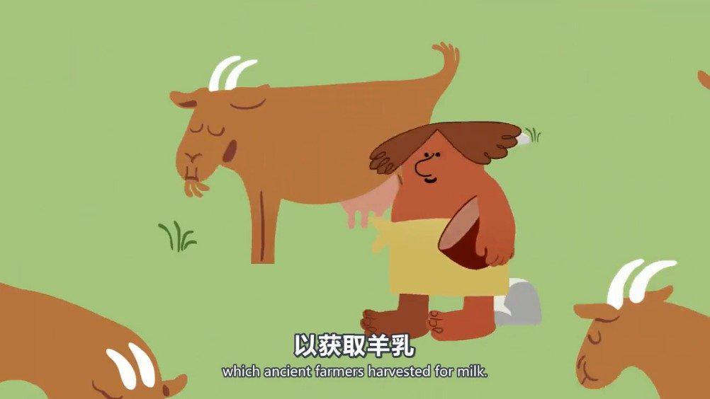 TED科普:奶酪简史 在帝国和皇室之前,在陶器和文字之前……