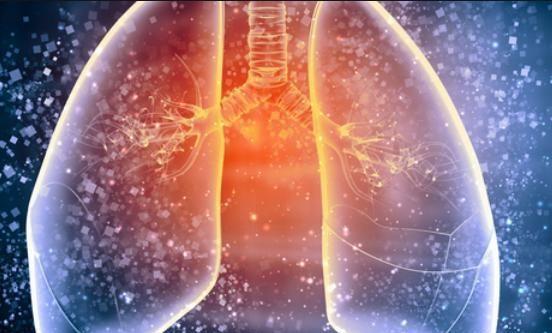 """肺的""""清道夫""""找到了,老烟民要常吃,或许肺可以好一点"""
