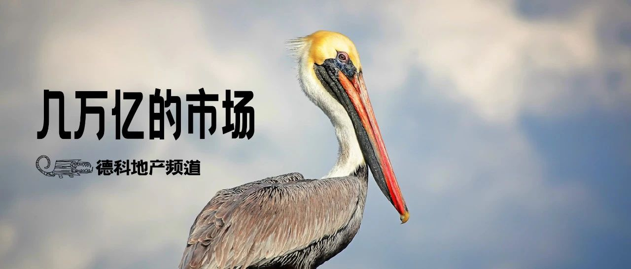 「塘鹅」是个苗头:未来龙湖至少是六家上市公司。︱刘德科