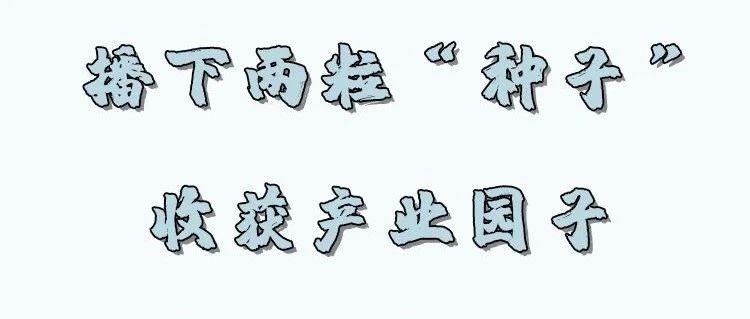 """每日工作参考 山西隰县:两粒""""种子""""助推现代农业产业园建设"""