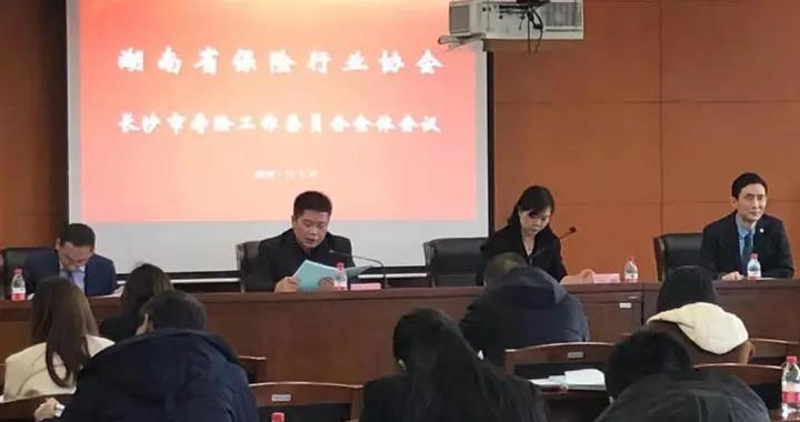 湖南省保险行业协会召开长沙寿险工作委员会议