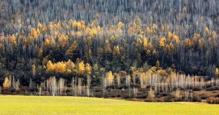 5年,内蒙古累计接待游客66510.63万人次,完成旅游收入17224.41亿元