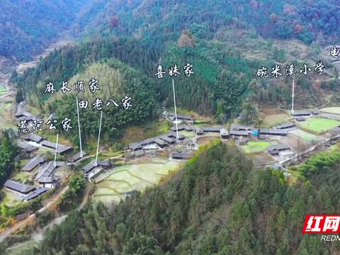 《江山如此多娇》11天收视率第一 牧笛溪人多了、张家界莓茶火了