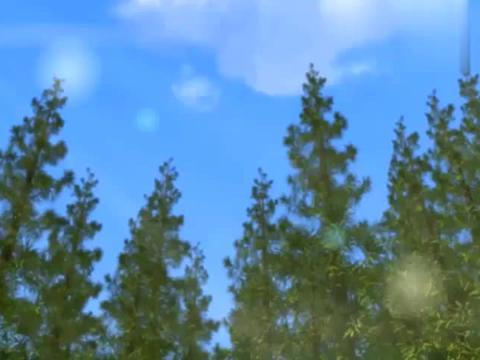 芭比:老妹想得美,深山野林还想上网,你当大自然是你家啊