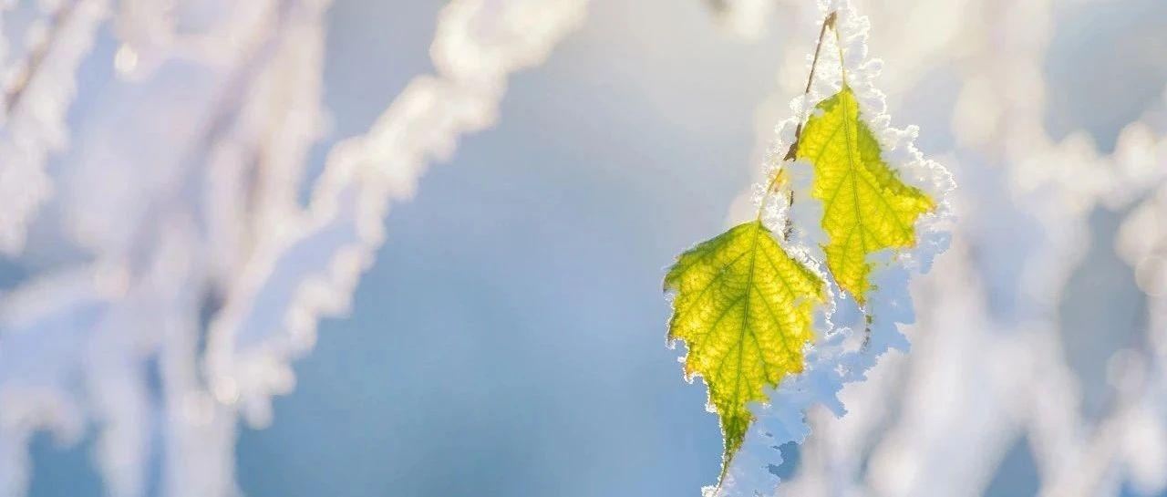 雪后全省多地最低气温跌破-20 ℃,明天冷空气再发力……
