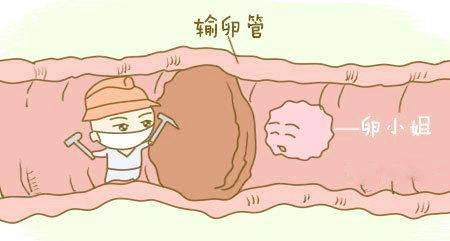 一侧输卵管堵塞可以顺利怀孕吗?-合肥喜得儿不孕不育医院