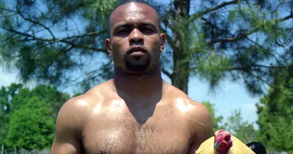 职业拳击传奇小罗伊·琼斯可能加入俄罗斯拳击联合会