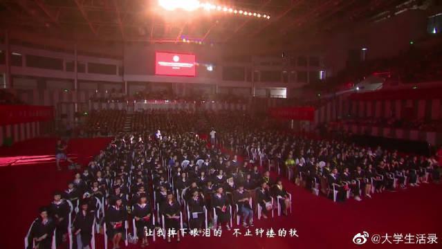 像看大型演唱会!