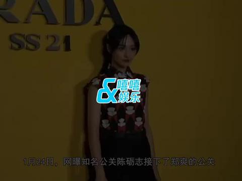 知名公关陈砺志将接手,曾因董洁潘粤明离婚案出名