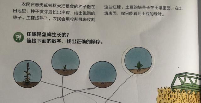 让孩子越玩越聪明的亲子游戏,国外家长都在用,充分开发孩子智商图3